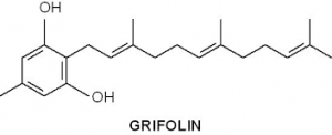 Grifolin