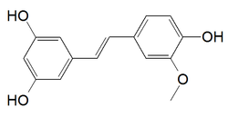 Isorhapontigenin