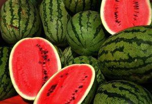 Watermelons. Figure 1 Cucurbitacin E, found abundantly in Watermelons, inhibits pulmonary tuberculosis via down-regulation of (Toll-like receptor-TLR) TLR-2 and Chemokine CXCL5 and up-regulation of phosphatase MKP-1