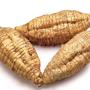 puerarin-isolated-from-pueraria-radix-puerariae-kudzu-plant