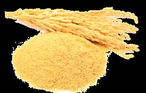 Rice bran.