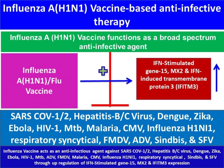 This image has an empty alt attribute; its file name is Influenza-A-H1N1-Vaccine-aids-in-attenuation-of-SARS-coronavirus1-and-2-production1-.jpg3_-770x578.jpg