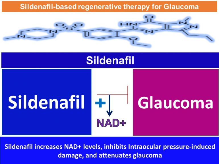 This image has an empty alt attribute; its file name is Sildenafil-Increases-NMN.NAD-levels-inhibits-Intraocular-pressure-induced-damage-and-attenuates-glaucoma-2-770x578.jpg