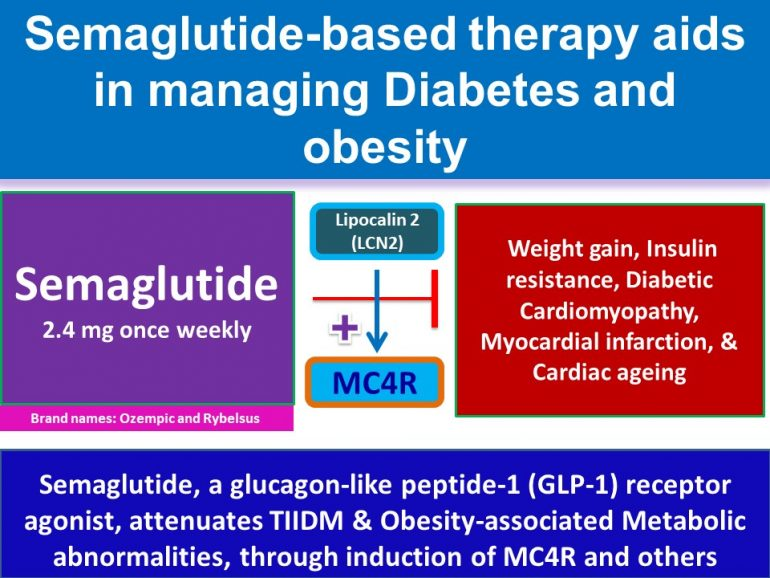 This image has an empty alt attribute; its file name is Semaglutide-attenuates-TIIDM-Obesity-associated-Metabolic-abnormalities-through-induction-of-MC4R2-770x578.jpg